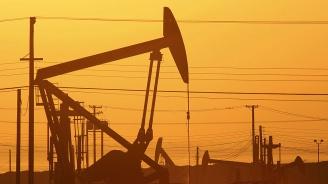 Русия обвини САЩ в контрабанда на петрол от Сирия за повече от 30 млн. долара на месец