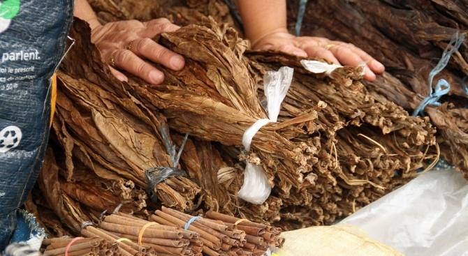 Откриха 210 килограма нелегален тютюн в село Крушаре