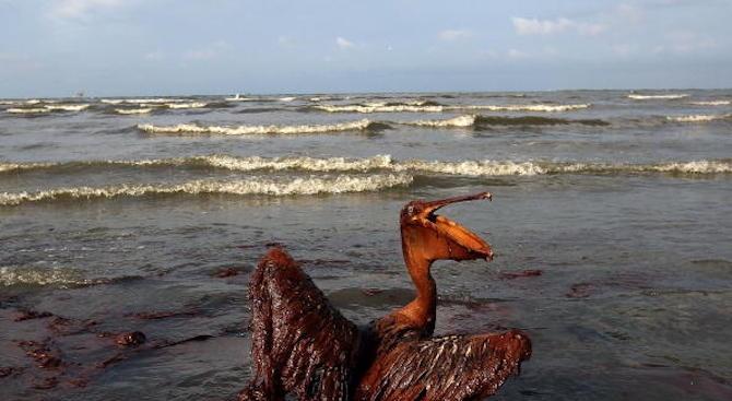 Петролен разлив в Мексико затвори четири плажа