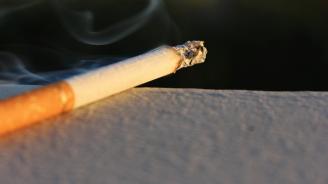 Забравена цигара подпали къща в Плевенско
