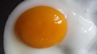 Индиец умря при опит да изяде 50 яйца