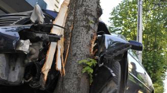 Катастрофа на пътя Плевен-Ловеч: Жена е с опасност за живота
