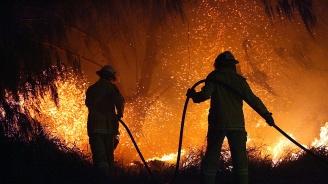 Горските пожари в Австралия взеха две жертви