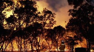 Над 70 пожара продължават да бушуват в Австралия