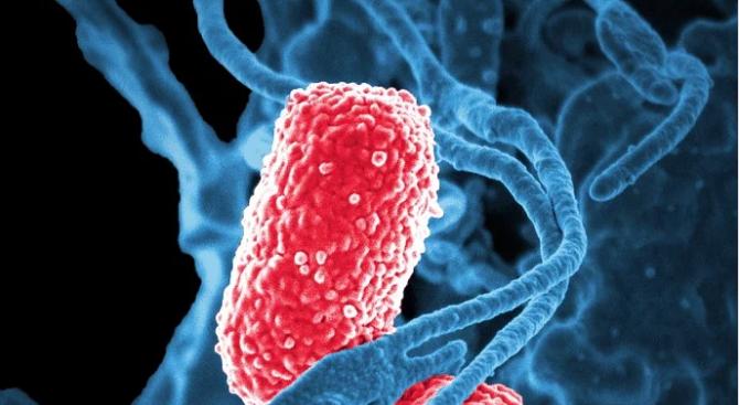 Пневмонията е предизвикала смъртта на едно дете под 5-годишна възраст