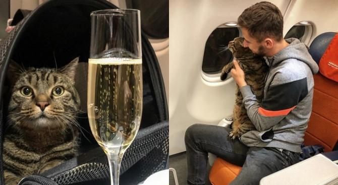 """Руската авиокомпания """"Аерофлот"""" отне точките за вярност на пътник, излъгал"""