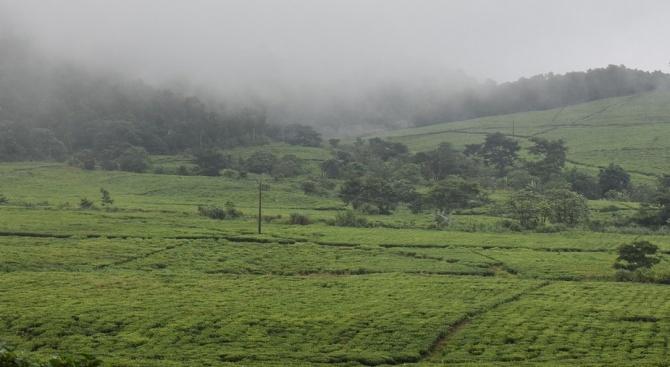 До края на годината 100% от земеделските и горски територии