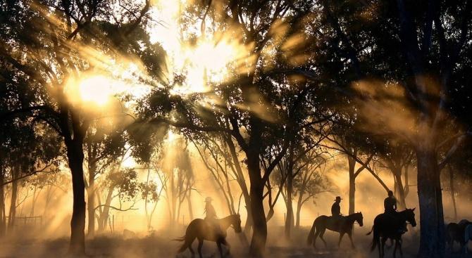 Жертвите на пожарите в Австралия вече са четири
