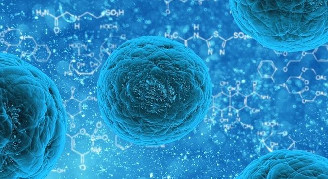 """Устойчивите на лекарства инфекции със супербактерии, наричани """"кошмар в развитие"""","""
