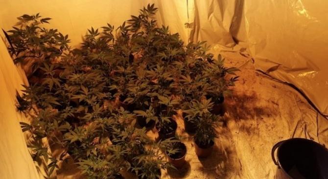 Полицаи разкриха домашна лаборатория за наркотици. Това съобщиха от пресцентъра
