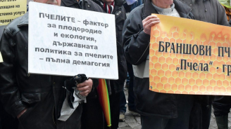 Пчелари излизат на протест пред Министерството на земеделието