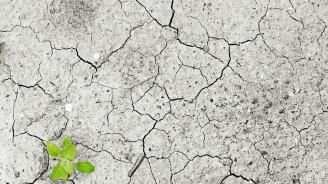 Експерт: Войните на 21 век са енергийни, следват тези за вода и храна