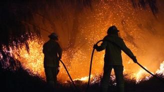 Пожарите в Австралия изпепелиха имот на Ръсел Кроу