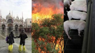 Учени: Климатичните промени донесоха наводнения, пожари, чума