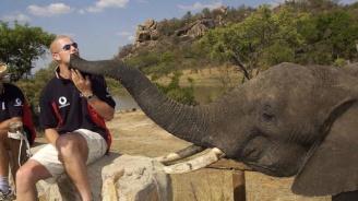 Местят хиляди животни от националния парк в Зимбабве