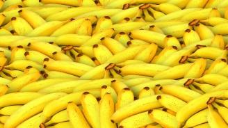 Над тон кокаин е намерен в контейнер с банани в Италия