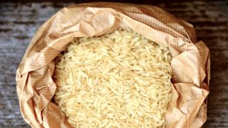 Египет намалява цените на субсидираните основни храни