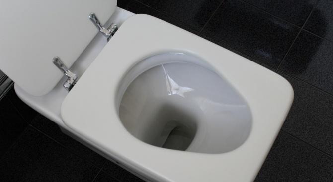 Днес е Световният ден на тоалетната