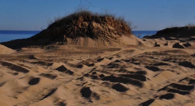 Незабавно да спре изземването на пясък от Черно море. Това