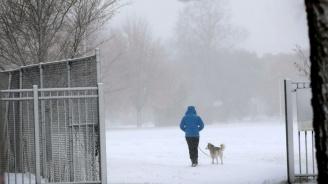 Десетки хиляди домакинства във Франция продължават да са без ток след обилните снеговалежи