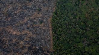 Обезлесяването в бразилска Амазония - с рекордно ниво от 11 г. насам