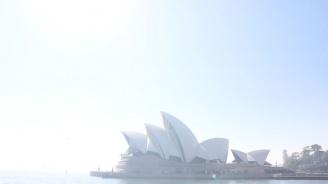 Отровна мъгла погълна Сидни