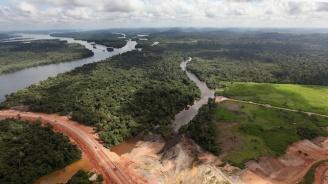 Бразилската джунгла е загубила 30% от площта си за една година