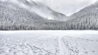 Сняг заваля в Пампорово