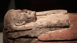 Археолози откриха дървени ковчези на 3500 години в Египет