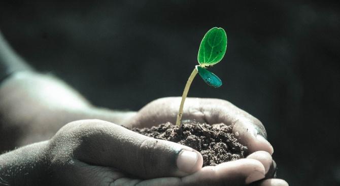 Световният ден на почвата  e