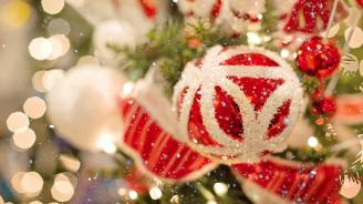 С празничен спектакъл севлиевци ще запалят светлините на Коледната елха