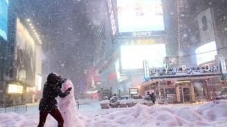 Снегът предизвика извънредно положение в Ню Йорк