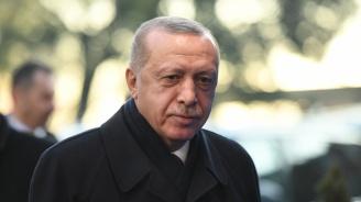 Турски писател разкри откъде произлиза родът на Ердоган