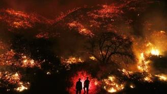 Най-малко 43 души загинаха при пожар в Индия