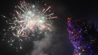 Посланикът на Русия у нас запали светлините на най-високата Коледна елха в Плевен