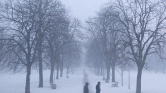 Ще има ли сняг за Коледа и кога ще се вдигнат мъглите?