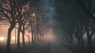Жълт код за мъгла е в сила за 13 области на страната днес