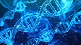 ДНК на мъж, с трансплантиран костен мозък, бе заменено с това на донора