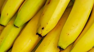 Художникът, изял банан за 120 хил. долара: Не съжалявам