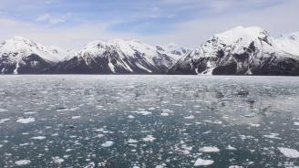 Ледниците в Аляска отстъпват с рекордни темпове