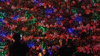Американски град постави рекорд за 797 елхи със запалени светлини
