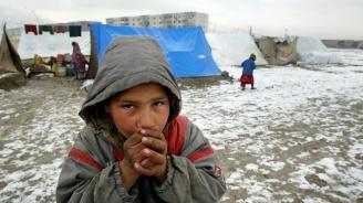 800 мигранти бяха прехвърлени от лагера Вучак в Сараево