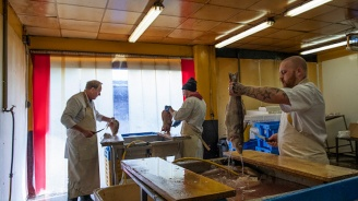 БАБХ унищожава 217 кг риба без документи