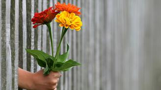 Ден, в който трябва да бъдете щедри и да доставяте радост