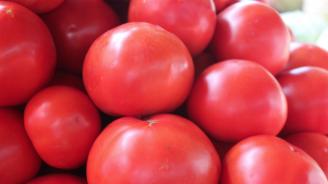 Цената на оранжерийните домати се понижи, на краставиците се вдигна