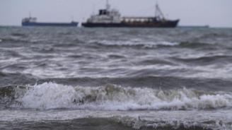Потъналият в Румъния кораб с 14 хиляди овце може да навреди на екологията