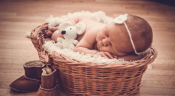 С около 60 бебета по-малко са се родили в ловешката болница през 2019 г.