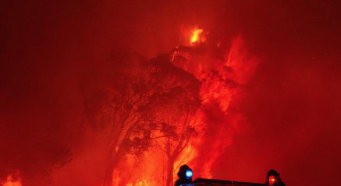 Българи в Австралия с коментар за пожарите там