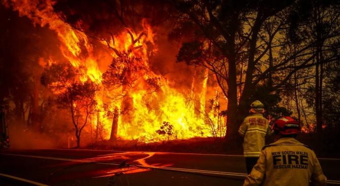 Интернет гръмна от подвеждащи снимки на пожарите в Австралия