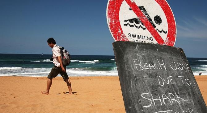 Германски футболист падна по невнимание във вода и го изядоха акули